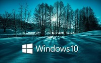 Windows 10 on snowy trees white text logo wallpaper 1920x1200 jpg