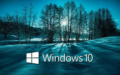 Windows 10 on snowy trees white text logo Wallpaper
