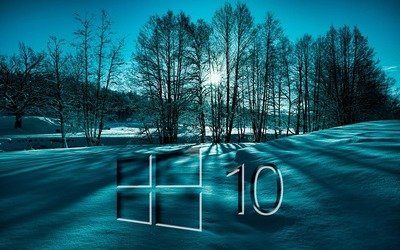 Windows 10 on snowy trees glass logo wallpaper