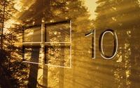 Windows 10 on sun rays in the forest big glass logo wallpaper 1920x1080 jpg