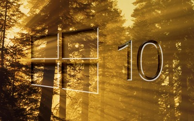 Windows 10 on sun rays in the forest big glass logo wallpaper