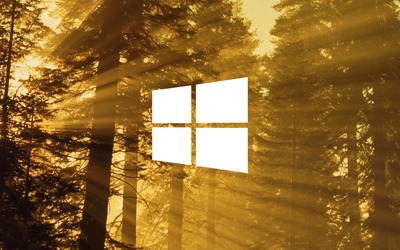 Windows 10 on sun rays in the forest simple white logo wallpaper
