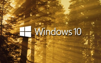 Windows 10 on sun rays in the forest text logo wallpaper