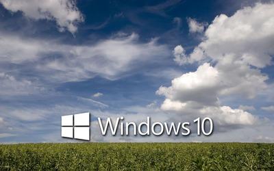 Windows 10 on the green field [4] wallpaper