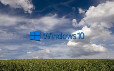 Windows 10 on the green field [3] wallpaper