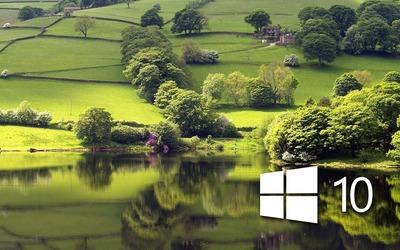 Windows 10 on the green meadow simple logo wallpaper