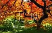 Windows 10 on the orange tree simple  glass logo wallpaper 1920x1200 jpg