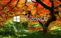 Windows 10 on the orange tree white text logo wallpaper 1920x1200 jpg