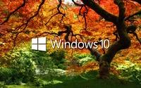 Windows 10 on the orange tree white text logo wallpaper 1920x1200 jpg