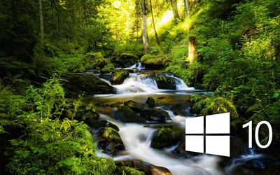 Windows 10 over the forest creek simple logo Wallpaper