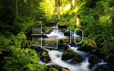 Windows 10 over the forest creek glass logo Wallpaper