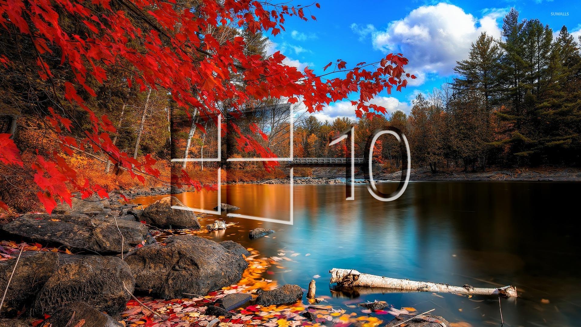 делятся бесплатные, картинка осень на виндовс фон приготовлении шпрот