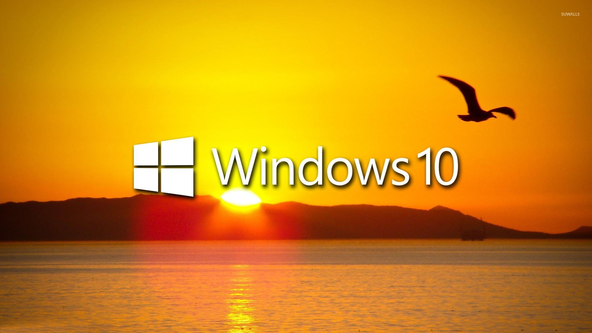 how to download windows 10 pro for another computer