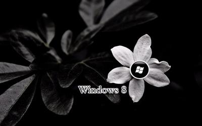 Windows 8 [30] wallpaper