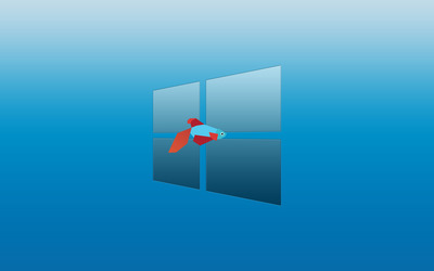Windows 8 and a fish wallpaper