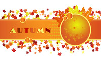 Autumn [4] wallpaper 2880x1800 jpg