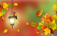 Bird on a lamp wallpaper 1920x1080 jpg