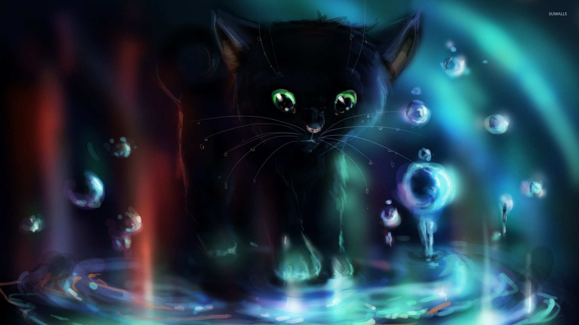Black Kitten Playing In The Puddle Wallpaper Digital Art Wallpapers 23806
