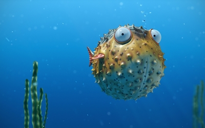 Blowfish in an aquarium Wallpaper
