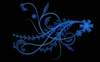 Blue bright flowers wallpaper 2560x1600 jpg