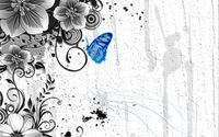 Blue butterfly on the plant wallpaper 1920x1200 jpg