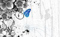 Blue butterfly on the plant wallpaper 1920x1200 jpg