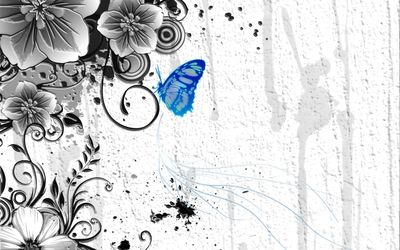 Blue butterfly on the plant wallpaper