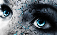 Blue eyes and cracked skin wallpaper 1920x1080 jpg