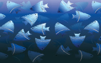 Blue fish wallpaper 1920x1200 jpg