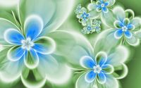 Blue flowers wallpaper 1920x1080 jpg