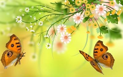 Butterfly around the summer bouquet wallpaper