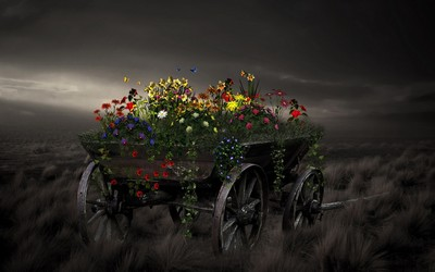 Cart with flowers wallpaper