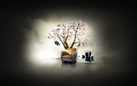Chair under cherry tree in the sea wallpaper 1920x1200 jpg