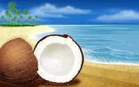 Coconut cut in half on the beach wallpaper 1920x1200 jpg