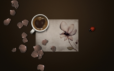 Coffee and rose petals wallpaper