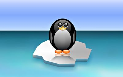 Cute penguin on the floating ice wallpaper