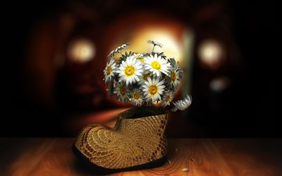 Daisies bouquet in a boot wallpaper