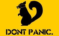 Don't Panic wallpaper 1920x1080 jpg