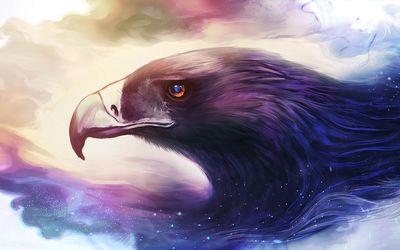 Eagle [6] wallpaper