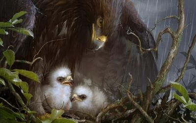 Eagle nest wallpaper