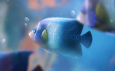 Fish [2] wallpaper