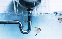 Fish under leaking faucet wallpaper 1920x1080 jpg
