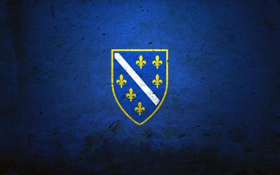 Flag of the Bosnian Kingdom Wallpaper