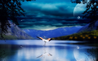 Flamingo on moonlit lake wallpaper