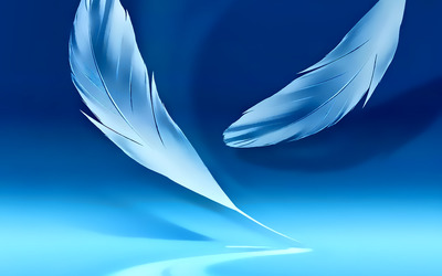 Floating feathers wallpaper