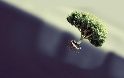 Floating Tree wallpaper