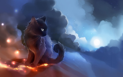 Kitten on a cliff in the clouds Wallpaper