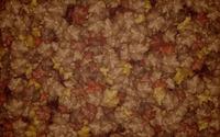 Leaves [16] wallpaper 2560x1600 jpg