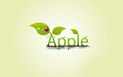 Leaves on the apple sign wallpaper
