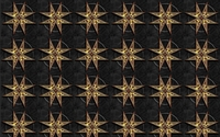 Leopard print on the starry pattern wallpaper 1920x1200 jpg
